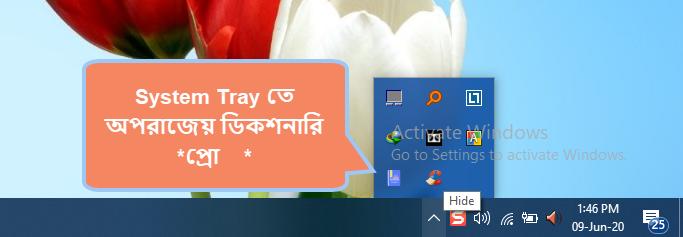 System Tray Aparajeyo Dictionary *PRO*